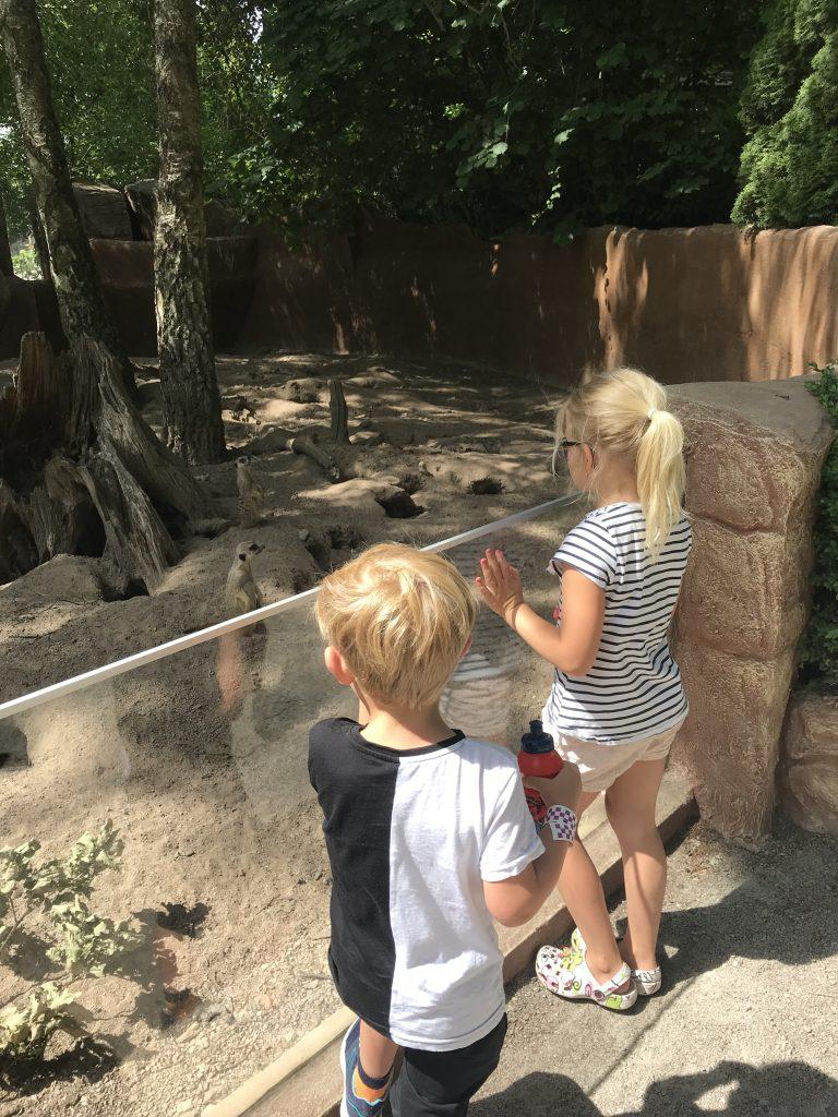 Ölands djurpark