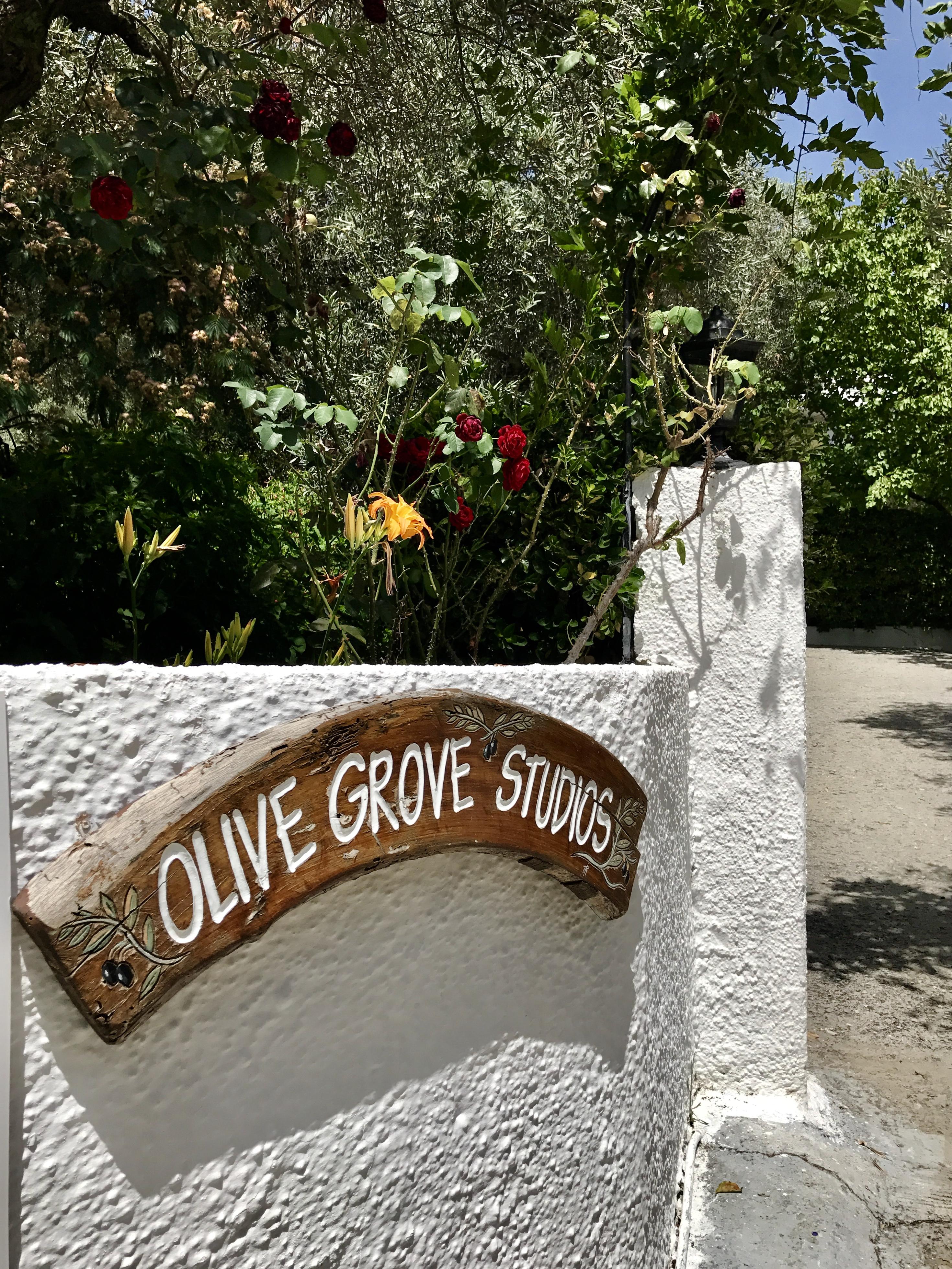 Olive Grove Skiathos
