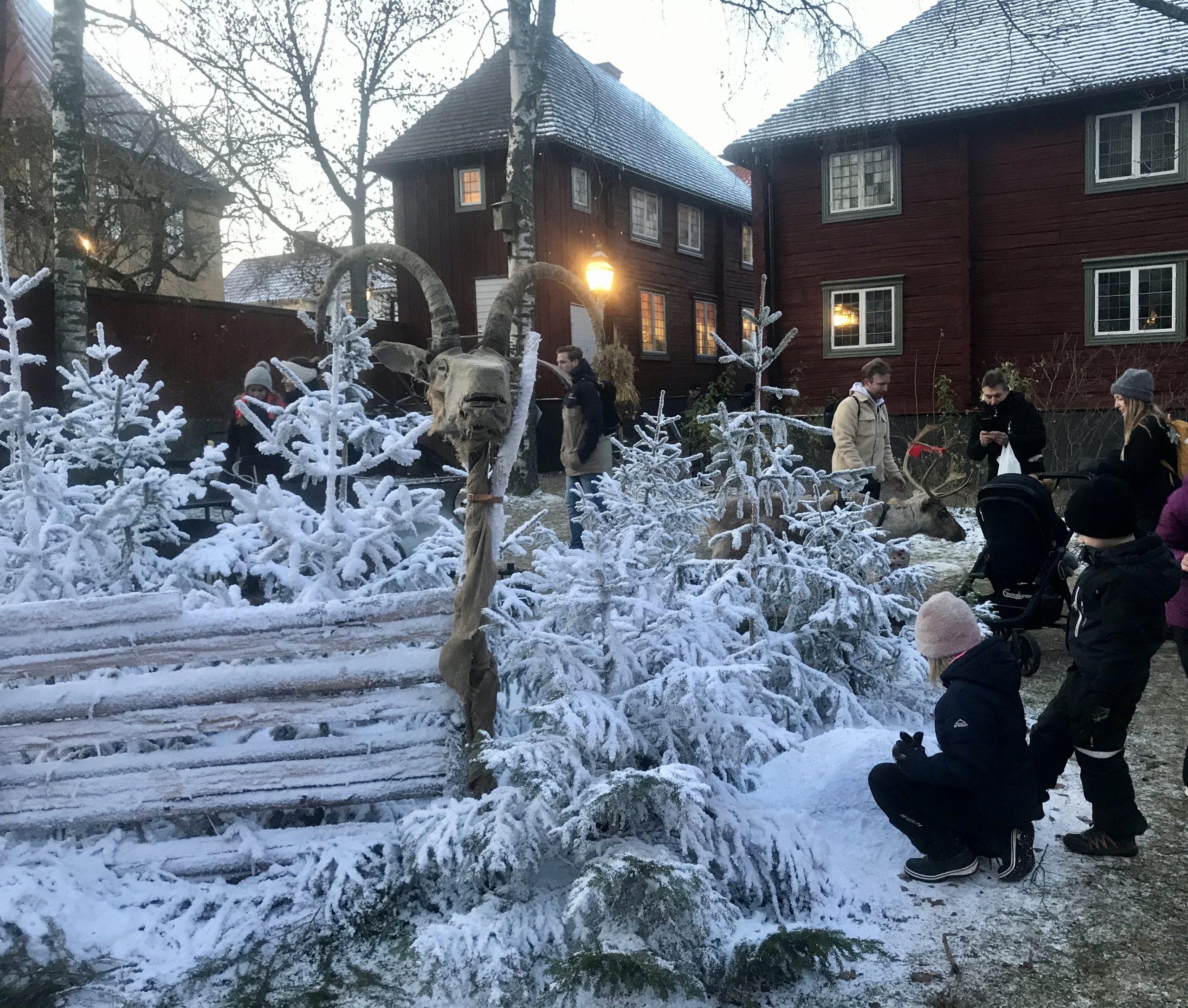 Julmarknad Gamla Linköping