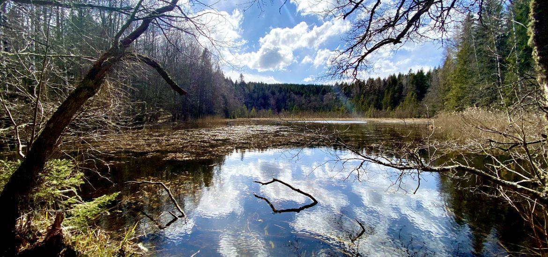 3 kortare vandringar i Östergötland